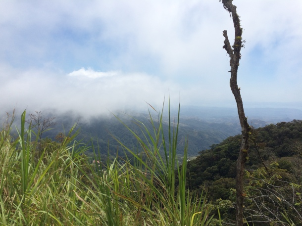 The view isn't bad - living in the Cloud Forest and all.